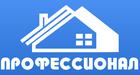 Логотип Профессионал